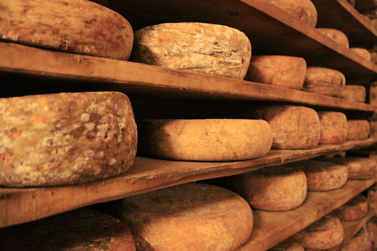 variétes de fromages traditionnels corses